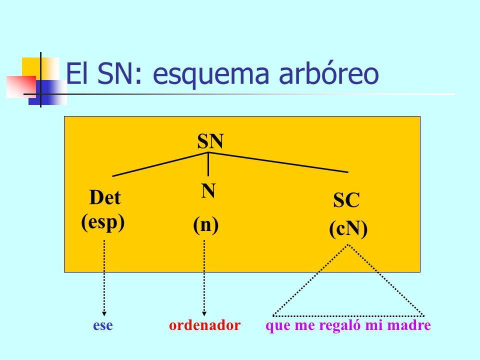 El SN: esquema arbóreo SN (n)(cN) Det N (esp) eseordenador SN PentiumIV Premium Aposición