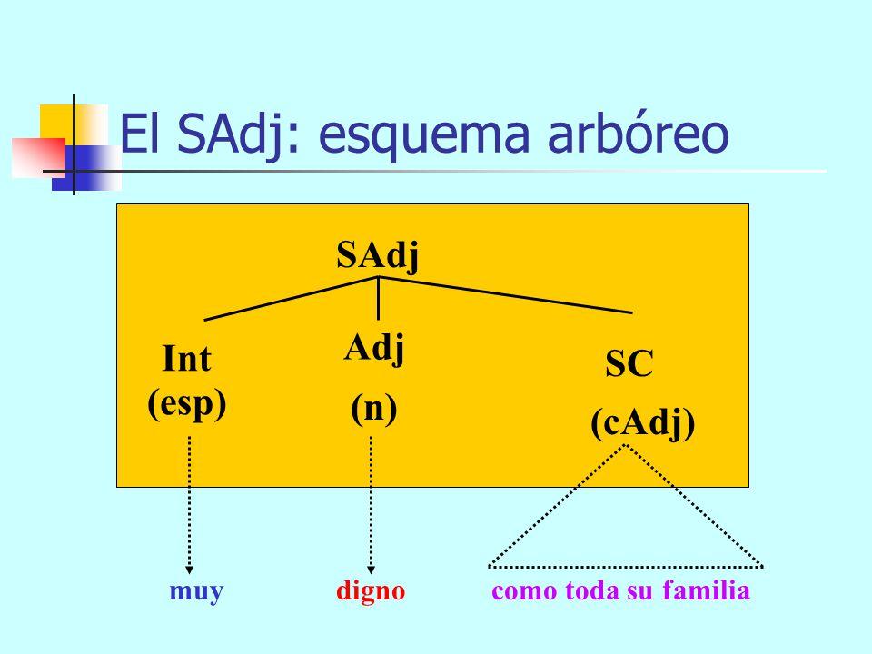 de compasión cristiana El SAdj: esquema arbóreo SAdj (n) (cAdj) Int Adj (esp) muydigno SP