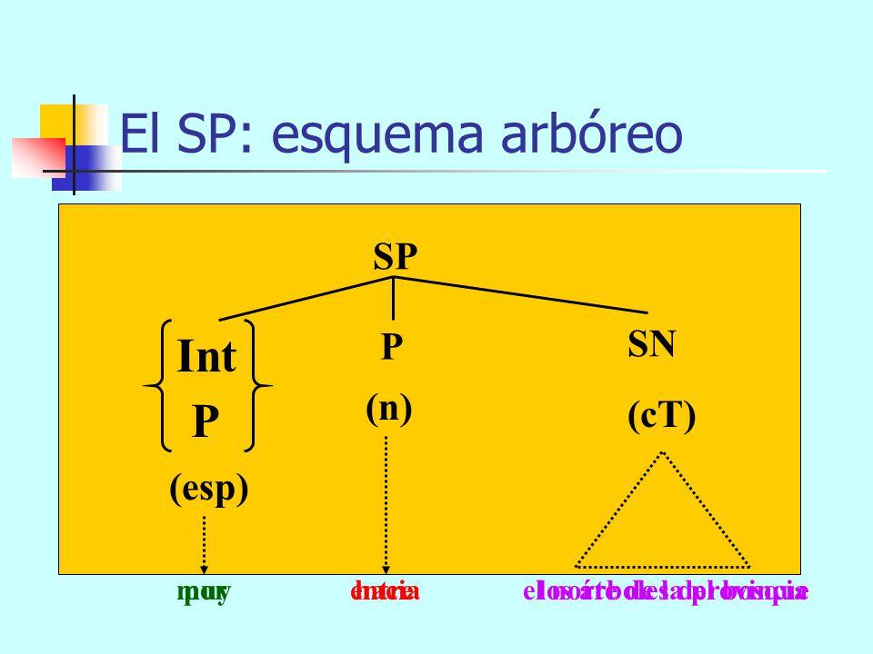 por entre los árboles del bosque de muy mayor El SP: esquema arbóreo SP (n) SN (cT) P (esp) muy hacia el norte de la provincia SAdj SAdv SC P Int muy