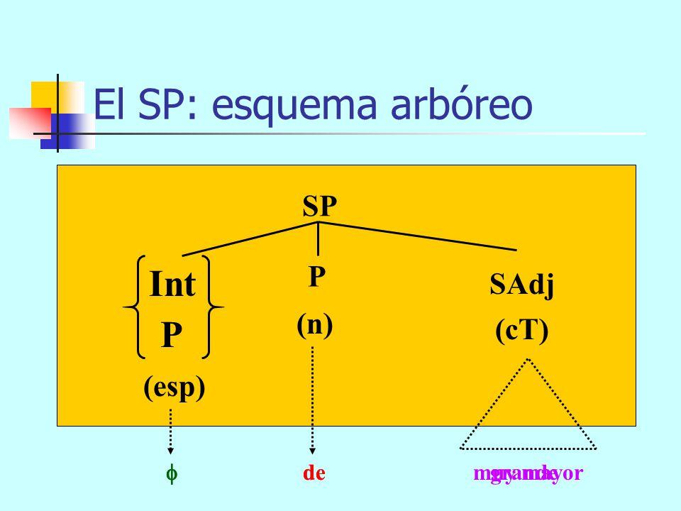 muy hacia el norte de la provinciapor entre los árboles del bosque El SP: esquema arbóreo SP (n) SN (cT) P (esp) P Int