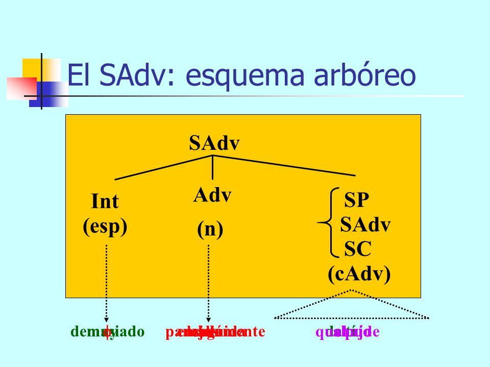 El SAdv: componentes SAdv = Int + Adv + espn SP SC SAdv cAdv