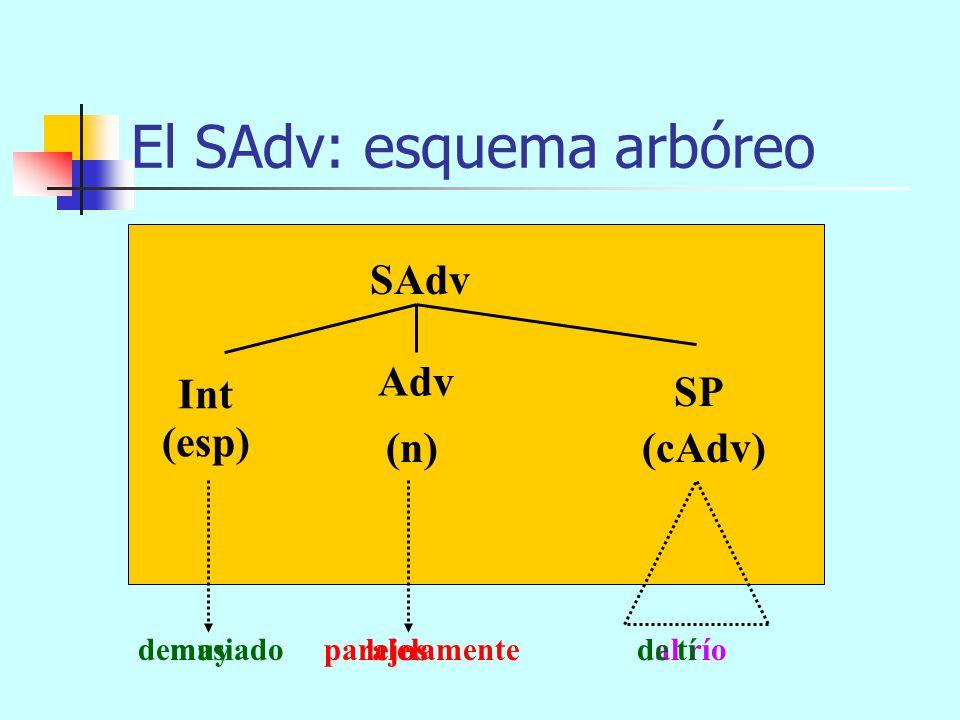 demasiado paralelamente al río El SAdv: esquema arbóreo SAdv (n) (cAdv) Int Adv (esp) SP SAdv SC muy lejos de tí enseguida que pude allá abajo
