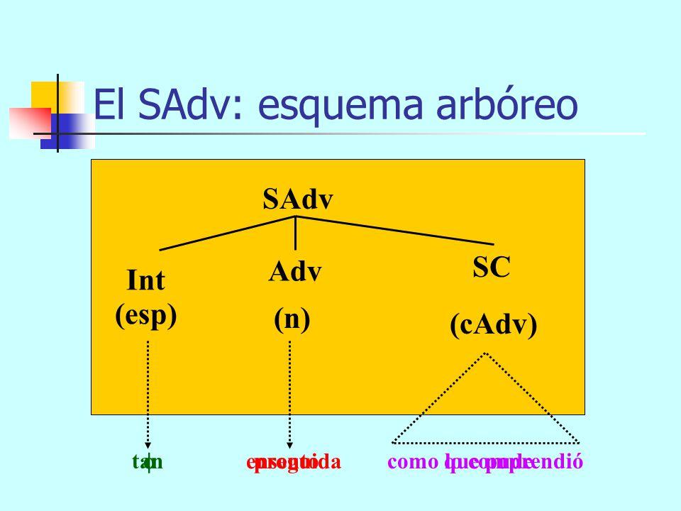 aquí cerca allá abajo El SAdv: esquema arbóreo SAdv (n)(cAdv) Int Adv (esp) SAdv