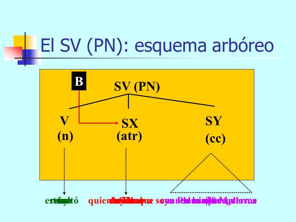 El SV (PN): componentes SV = V + n SN SAdj SAdv SP SC atr SN SAdv SP SC cc +