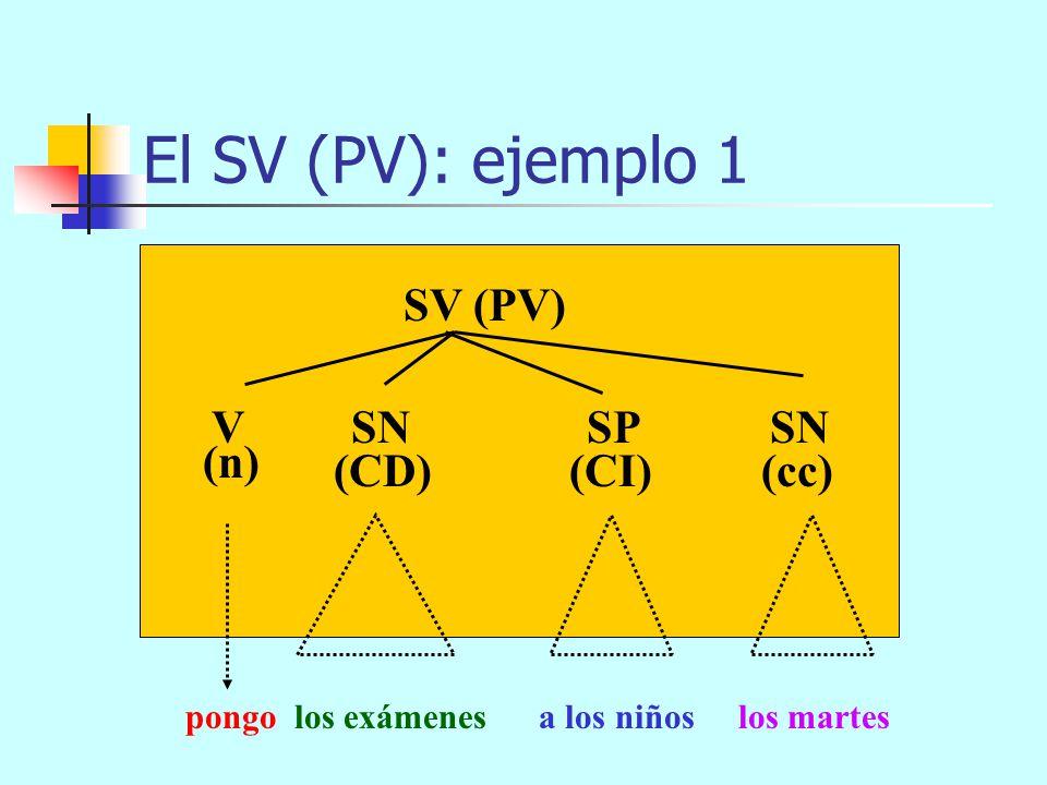 El SV (PV): componentes SV = V + n SN SP SC CD SN SAdv SP SC cc +SP CI +