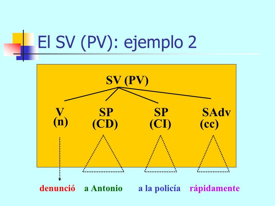 pongo los exámenes a los niños los martes El SV (PV): ejemplo 1 SV (PV) (CD)(cc) V SN (n) SN (CI) SP