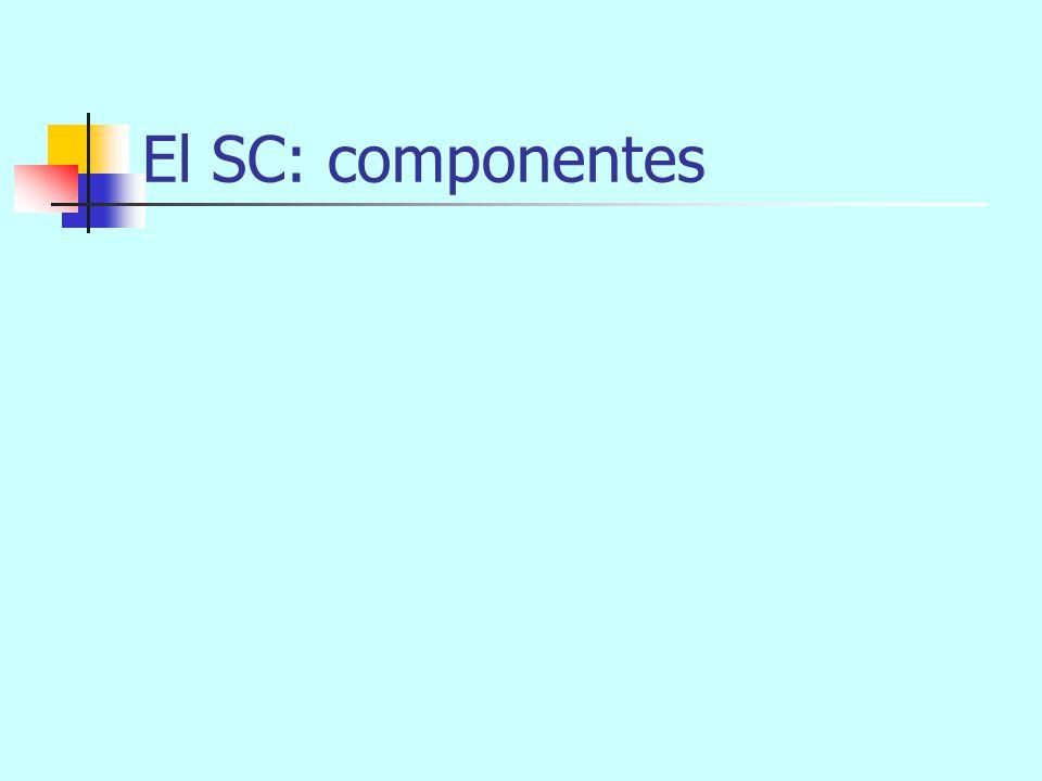 pienso en el examen de mañana con horror El SV (PV): ejemplo 5 SV (PV) (cc) V (n) SP (Supl) SP