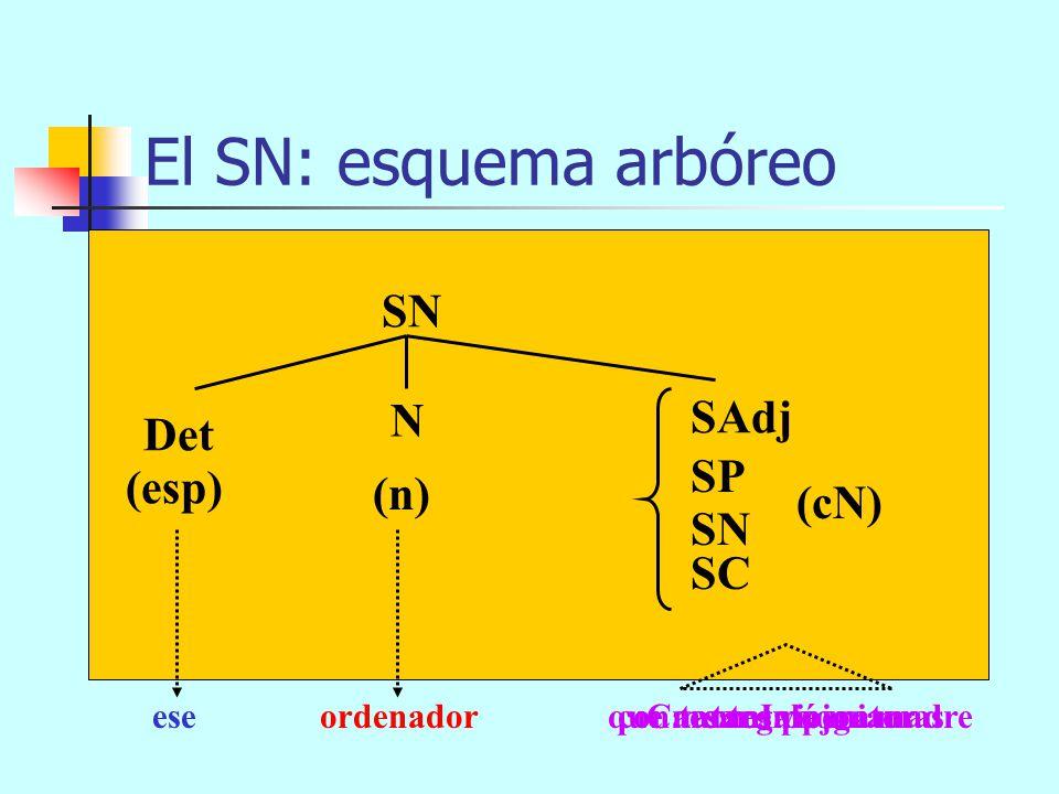 El SN: componentes SN = Det + N + espn SAdj SP SN SC cN