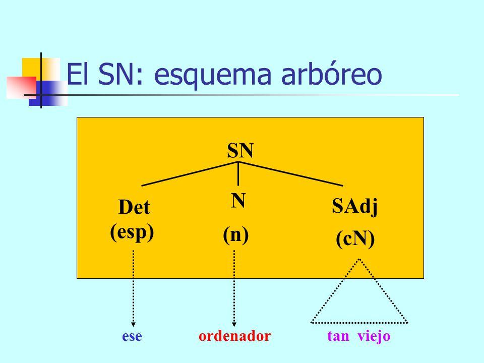 El SN: esquema arbóreo SN (n) SAdj (cN) Det N (esp) eseordenadortan viejo SP SN SC Caesar Imperatorcon tantos programasque me regaló mi madre