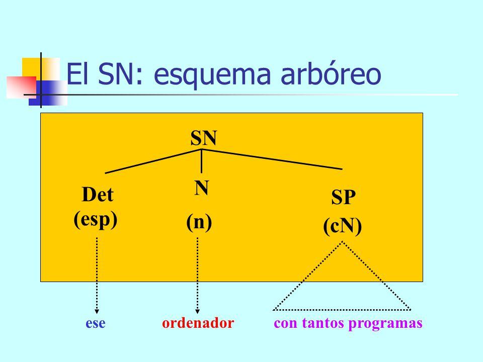El SN: esquema arbóreo SN (n) SAdj (cN) Det N (esp) eseordenadortan viejo