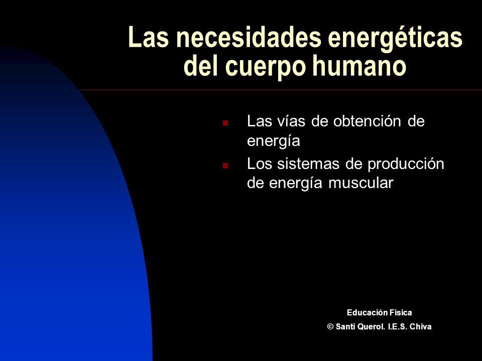 Las necesidades energéticas del cuerpo humano Las vías de obtención de energía Los sistemas de producción de energía muscular Educación Física © Santi