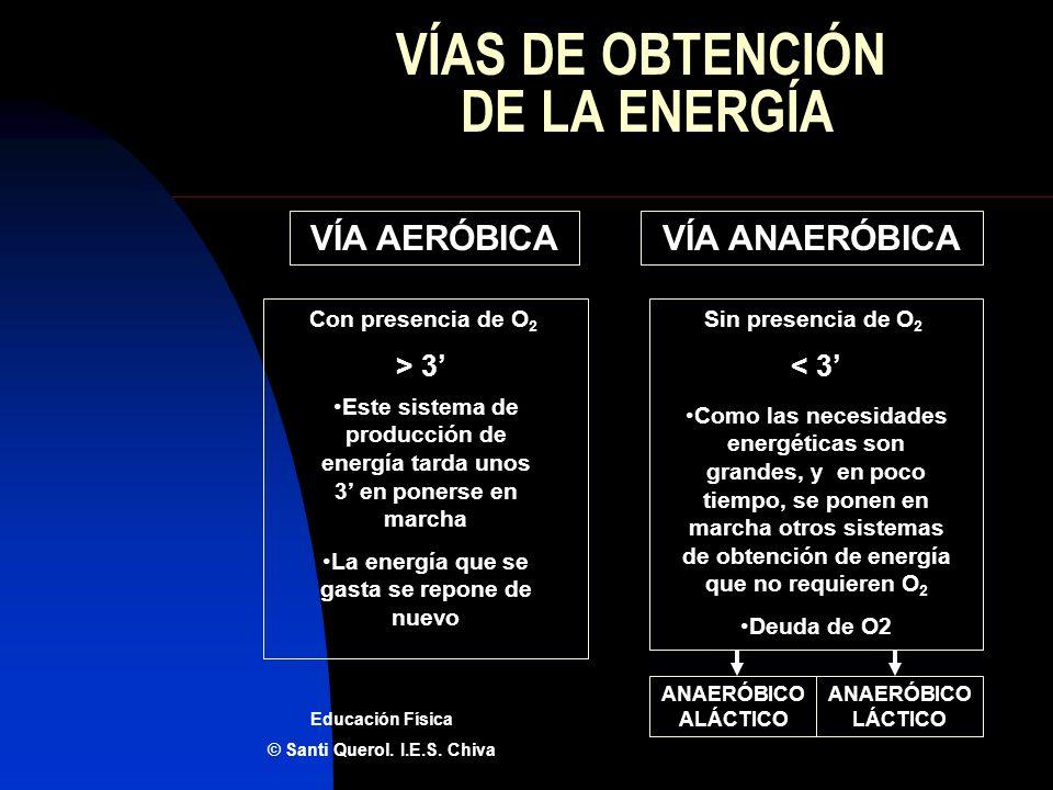 VÍAS DE OBTENCIÓN DE LA ENERGÍA VÍA AERÓBICAVÍA ANAERÓBICA Sin presencia de O 2 Con presencia de O 2 > 3< 3 Educación Física © Santi Querol. I.E.S. Ch