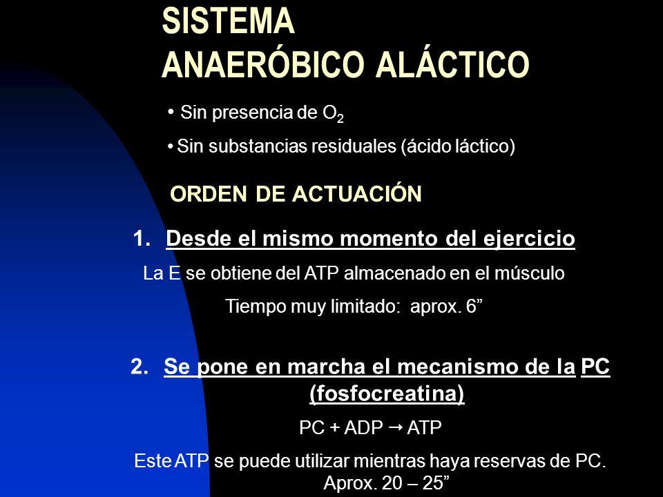 SISTEMA ANAERÓBICO ALÁCTICO Sin presencia de O 2 Sin substancias residuales (ácido láctico) ORDEN DE ACTUACIÓN 1.Desde el mismo momento del ejercicio