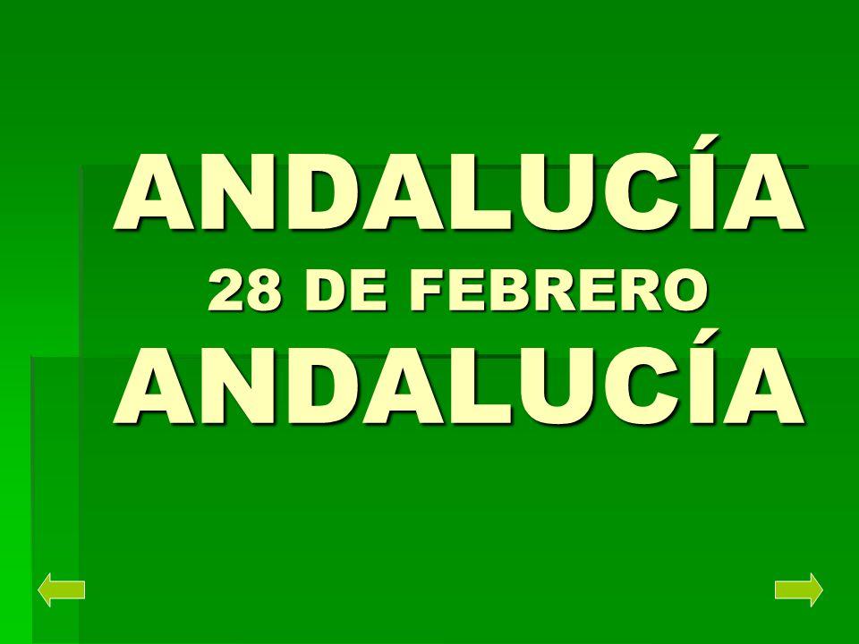 EL PARLAMENTO DE ANDALUCÍA El Parlamento estará compuesto por 90 a 110 Diputados, elegidos cada 4 años por todos los andaluces mayores de 18 años, en sufragio universal, igual, libre, directo y secreto.