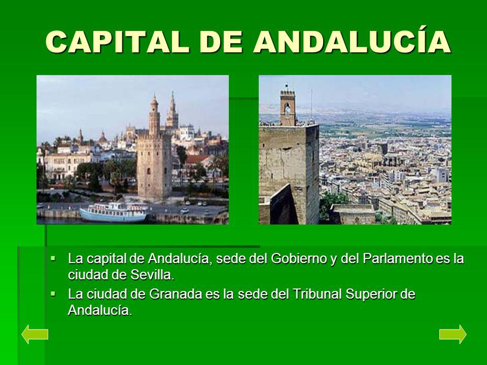 CAPITAL DE ANDALUCÍA La capital de Andalucía, sede del Gobierno y del Parlamento es la ciudad de Sevilla. La capital de Andalucía, sede del Gobierno y