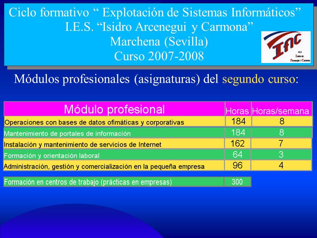 Ciclo formativo Explotación de Sistemas Informáticos I.E.S. Isidro Arcenegui y Carmona Marchena (Sevilla) Curso 2007-2008 Módulos profesionales (asign