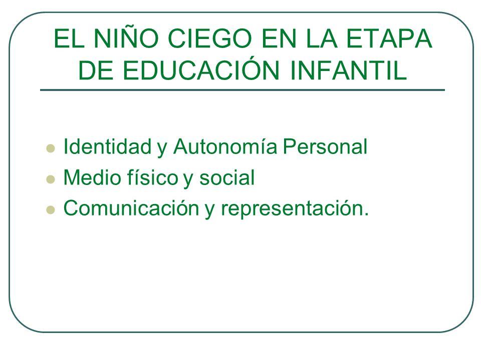 EL NIÑO CIEGO EN LA ETAPA DE EDUCACIÓN INFANTIL Identidad y Autonomía Personal Medio físico y social Comunicación y representación.
