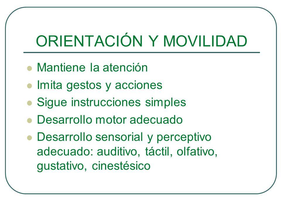 ORIENTACIÓN Y MOVILIDAD Mantiene la atención Imita gestos y acciones Sigue instrucciones simples Desarrollo motor adecuado Desarrollo sensorial y perc