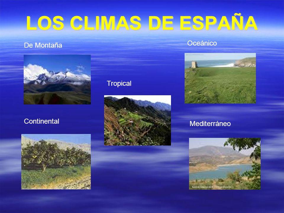 LOS CLIMAS DE ESPAÑA De Montaña Oceánico Continental Mediterráneo Tropical