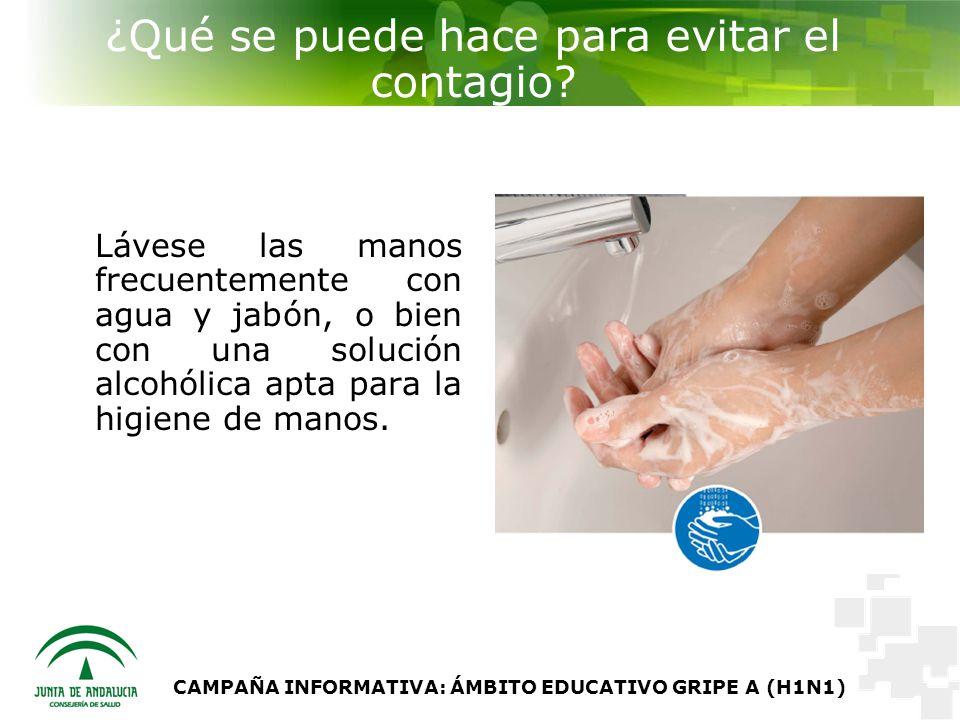 CAMPAÑA INFORMATIVA: ÁMBITO EDUCATIVO GRIPE A (H1N1) ¿Qué se puede hace para evitar el contagio.