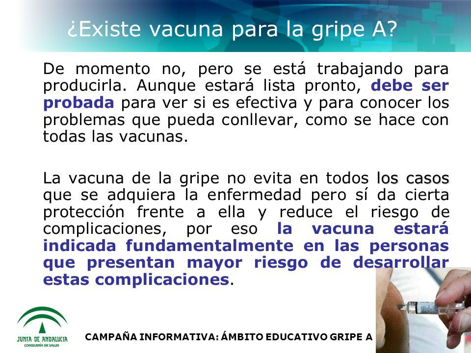 CAMPAÑA INFORMATIVA: ÁMBITO EDUCATIVO GRIPE A (H1N1) ¿Existe vacuna para la gripe A.