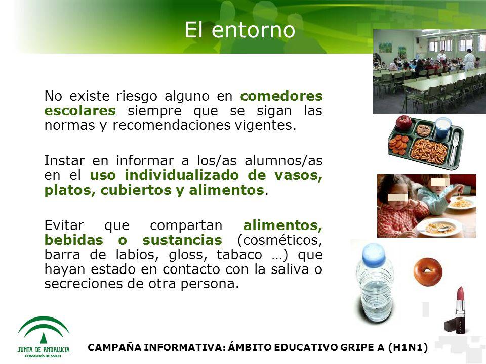CAMPAÑA INFORMATIVA: ÁMBITO EDUCATIVO GRIPE A (H1N1) El entorno No existe riesgo alguno en comedores escolares siempre que se sigan las normas y recomendaciones vigentes.
