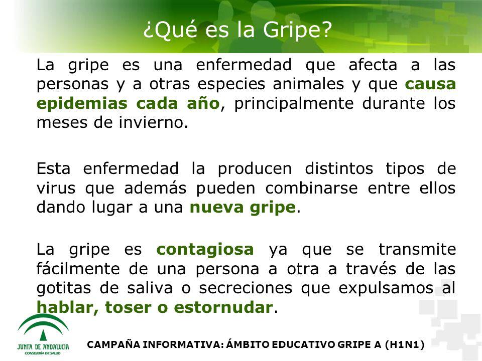 CAMPAÑA INFORMATIVA: ÁMBITO EDUCATIVO GRIPE A (H1N1) ¿Qué es la Gripe.