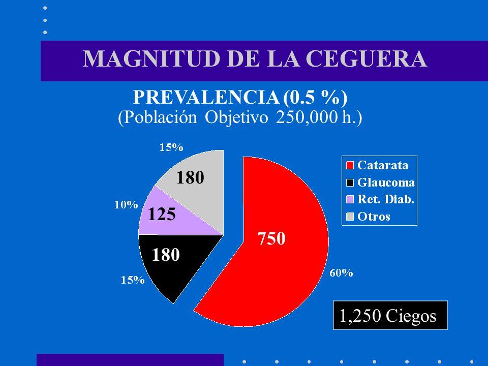 MAGNITUD DE LA CEGUERA 750 3750 150 OJOS CIEGOS : 1,500 OJOS DVS : 1,500 OJOS PARA OPERAR: 3,000 INCIDENCIA 20 % 600 CATARATAS DV DVS (Población Objetivo 250,000 h.)