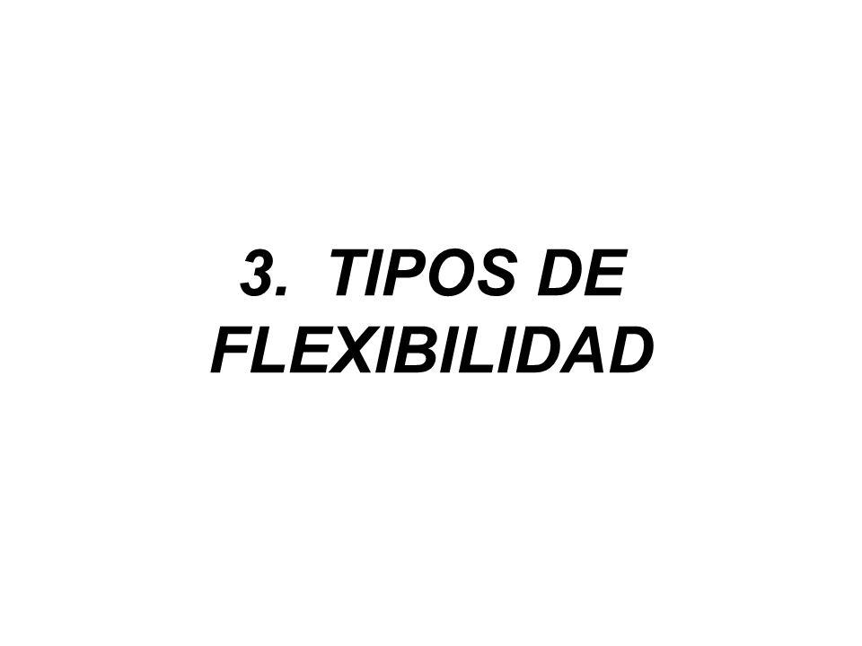 3.TIPOS DE FLEXIBILIDAD