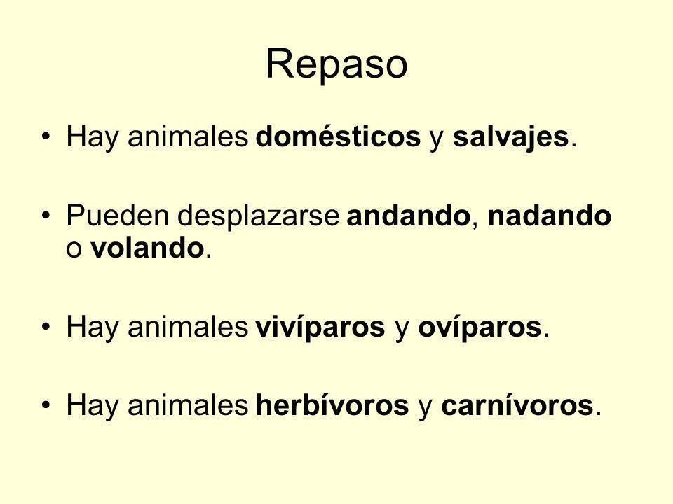 Repaso Hay animales domésticos y salvajes. Pueden desplazarse andando, nadando o volando. Hay animales vivíparos y ovíparos. Hay animales herbívoros y