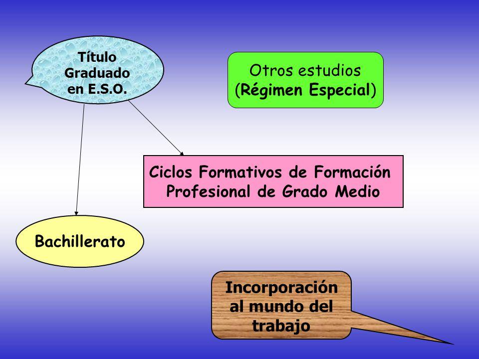 Bachillerato Ciclos Formativos de Formación Profesional de Grado Medio Título Graduado en E.S.O.