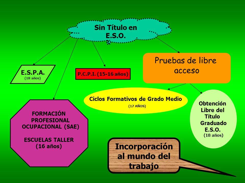 CONDUCCIÓN DE ACTIVIDADES FÍSICAS Y DEPORTIVAS GESTIÓN ADMINISTRATIVA EQ.