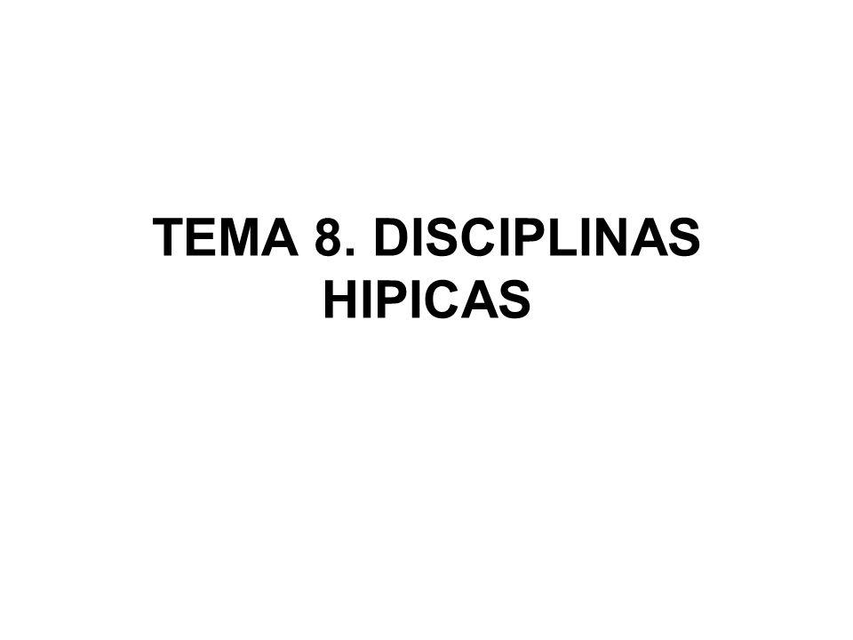 Trec El TREC es una de las pruebas más completas de las disciplinas ecuestres.