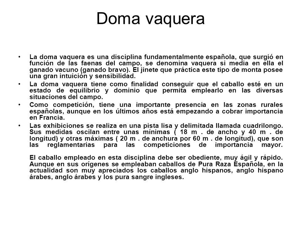 Doma vaquera La doma vaquera es una disciplina fundamentalmente española, que surgió en función de las faenas del campo, se denomina vaquera si media
