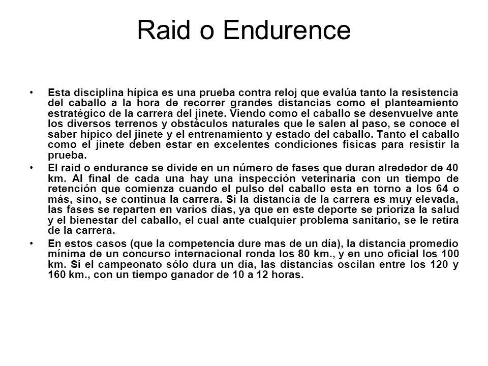 Raid o Endurence Esta disciplina hípica es una prueba contra reloj que evalúa tanto la resistencia del caballo a la hora de recorrer grandes distancia