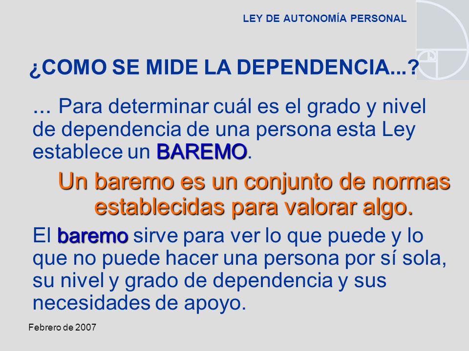 Febrero de 2007 LEY DE AUTONOMÍA PERSONAL BAREMO...