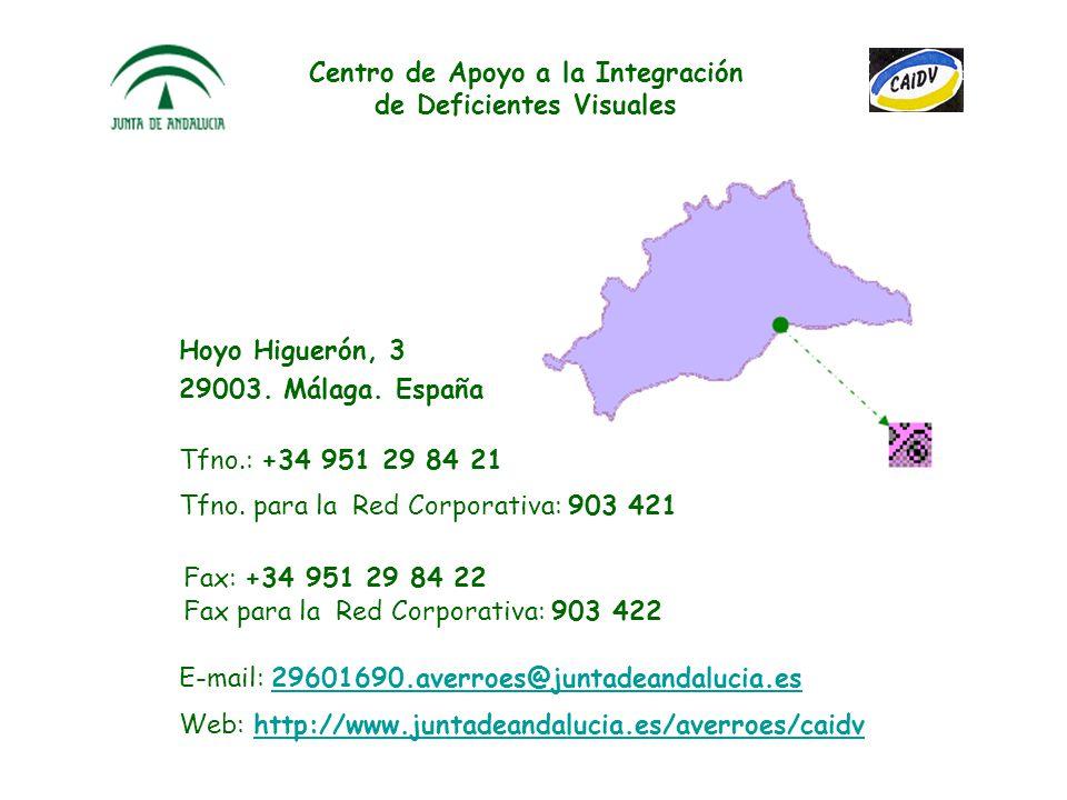 Centro de Apoyo a la Integración de Deficientes Visuales Hoyo Higuerón, 3 29003.