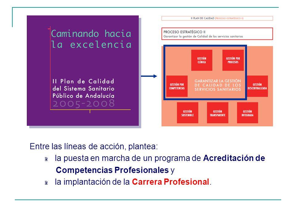 Entre las líneas de acción, plantea: la puesta en marcha de un programa de Acreditación de Competencias Profesionales y la implantación de la Carrera