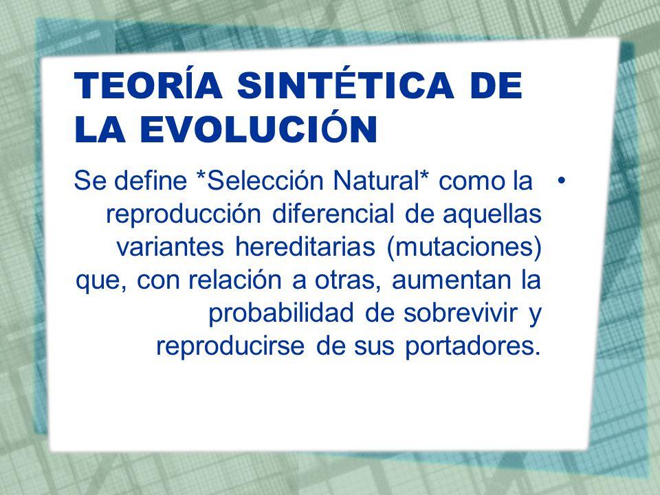 TEOR Í A SINT É TICA DE LA EVOLUCI Ó N Se define *Selección Natural* como la reproducción diferencial de aquellas variantes hereditarias (mutaciones)
