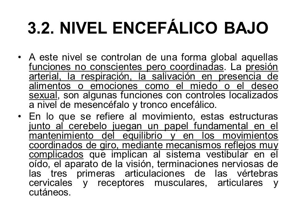 3.2. NIVEL ENCEFÁLICO BAJO A este nivel se controlan de una forma global aquellas funciones no conscientes pero coordinadas. La presión arterial, la r