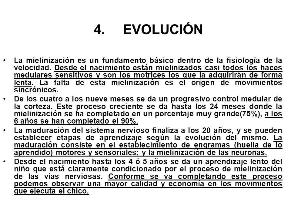4.EVOLUCIÓN La mielinización es un fundamento básico dentro de la fisiología de la velocidad. Desde el nacimiento están mielinizados casi todos los ha
