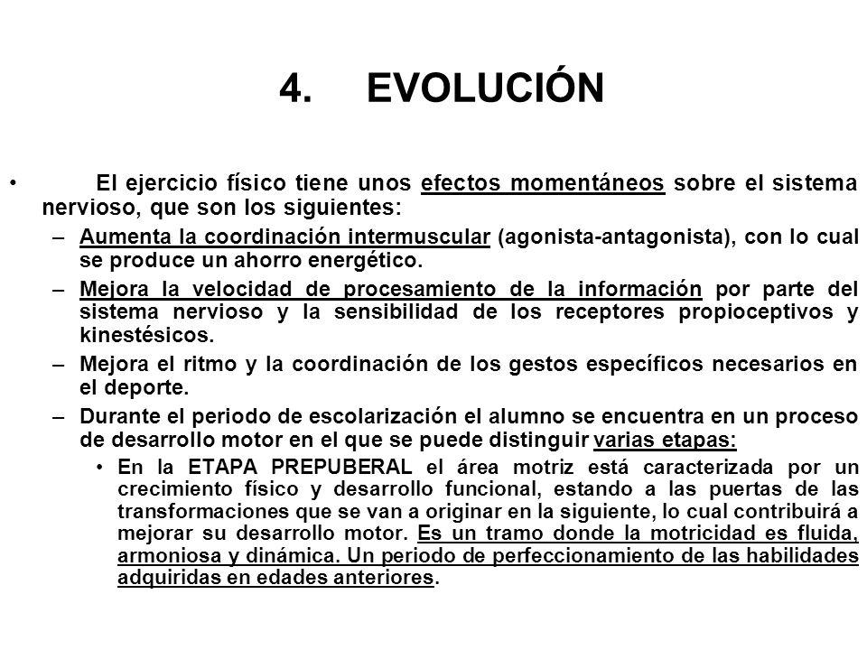 4.EVOLUCIÓN El ejercicio físico tiene unos efectos momentáneos sobre el sistema nervioso, que son los siguientes: –Aumenta la coordinación intermuscul