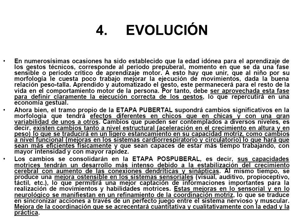 4.EVOLUCIÓN En numerosísimas ocasiones ha sido establecido que la edad idónea para el aprendizaje de los gestos técnicos, corresponde al período prepu