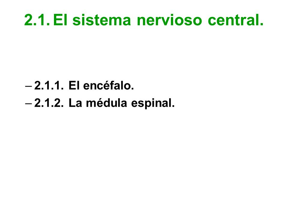 2.1.El sistema nervioso central. –2.1.1.El encéfalo. –2.1.2.La médula espinal.