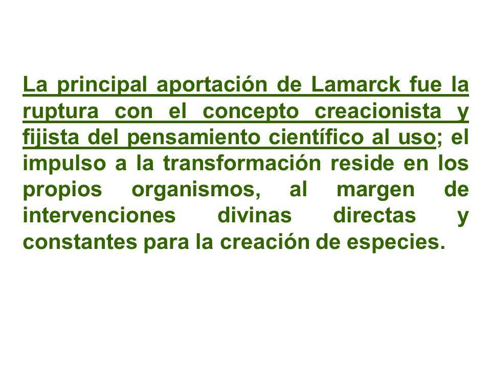 La principal aportación de Lamarck fue la ruptura con el concepto creacionista y fijista del pensamiento científico al uso; el impulso a la transforma