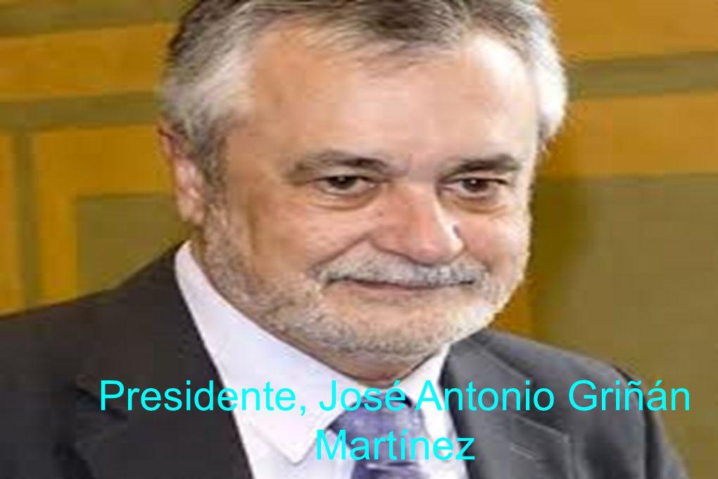 Presidente, José Antonio Griñán Martínez