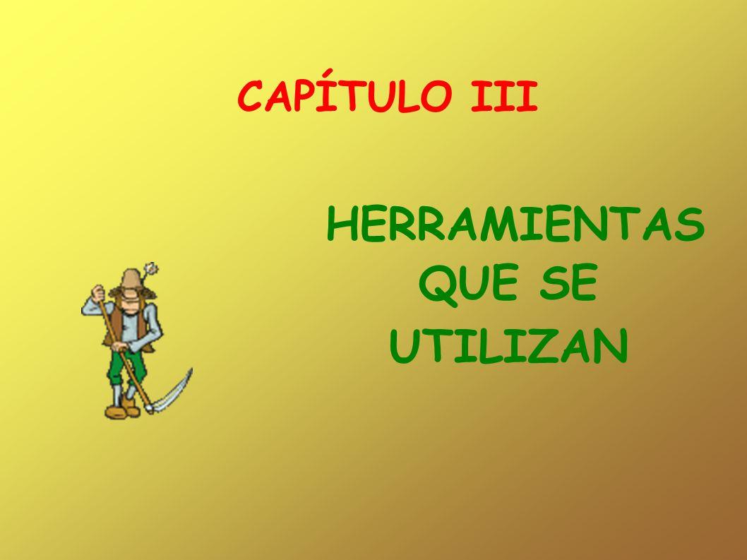 CAPÍTULO III HERRAMIENTAS QUE SE UTILIZAN
