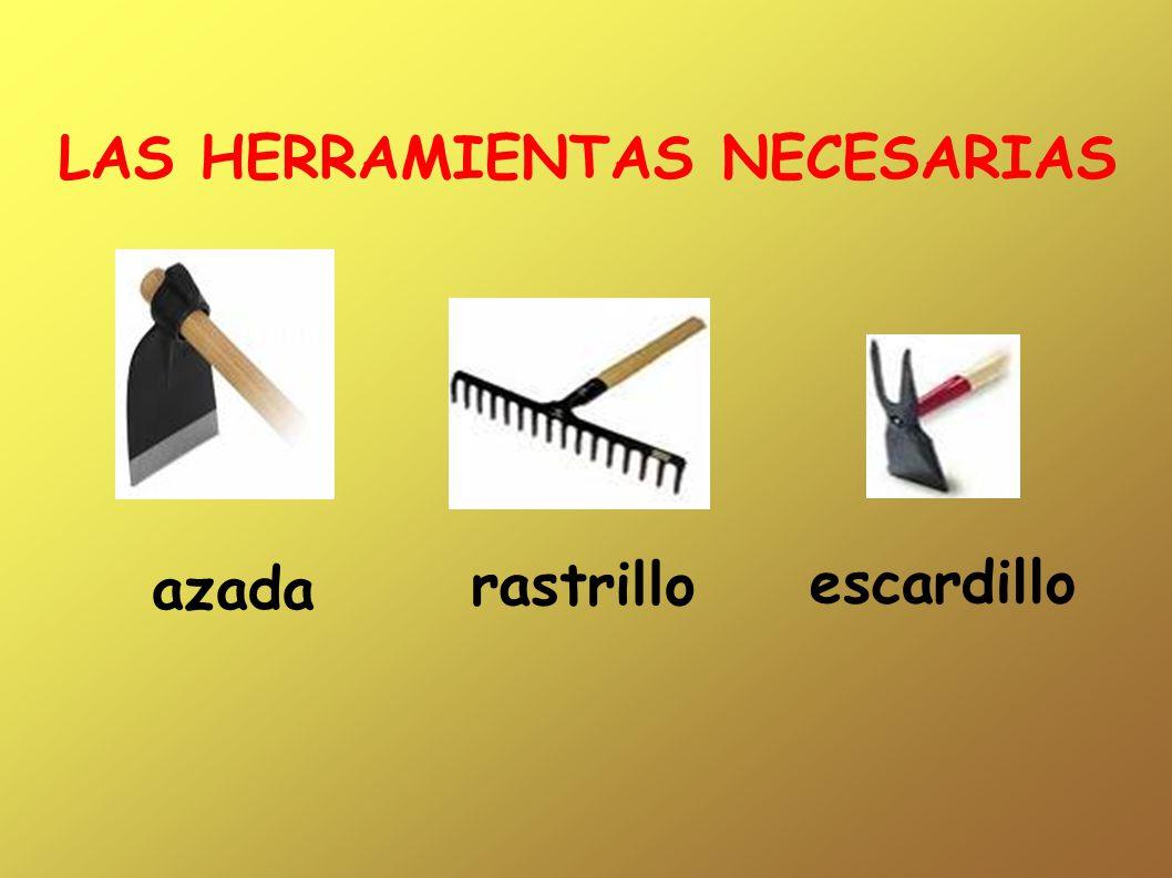azada rastrillo escardillo LAS HERRAMIENTAS NECESARIAS