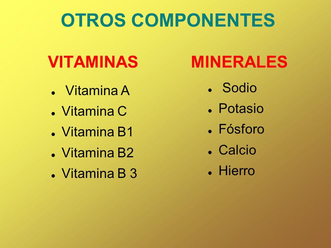 OTROS COMPONENTES VITAMINAS MINERALES Vitamina A Vitamina C Vitamina B1 Vitamina B2 Vitamina B 3 Sodio Potasio Fósforo Calcio Hierro