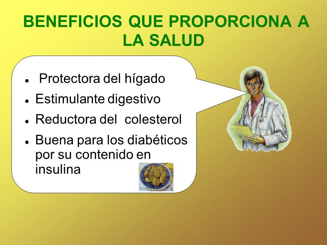 BENEFICIOS QUE PROPORCIONA A LA SALUD Protectora del hígado Estimulante digestivo Reductora del colesterol Buena para los diabéticos por su contenido